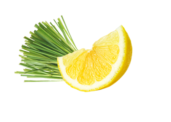 Lipa Flavour - Limun trava